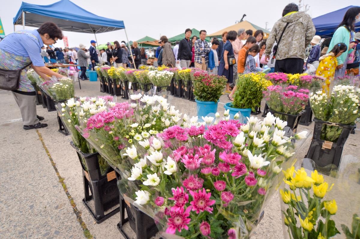 色とりどりの切り花を選ぶ市民=11日午前7時すぎ、八戸市新湊