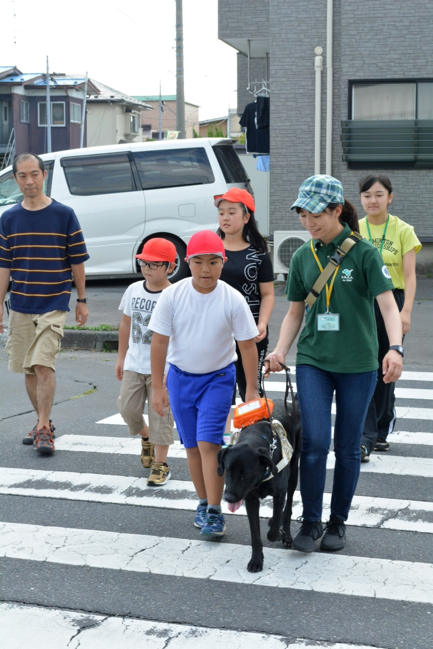 実際に横断歩道の歩行練習をする児童ら